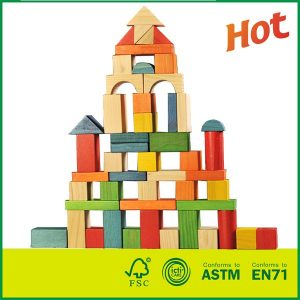 Solid Wood Blocks Stacking Bricks Board Games 50 Pieces Construction Building Toys Set